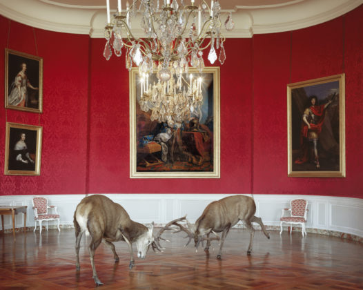 Karen Knorr, 005 The Kings Reception, série Fables, 2003-2009
