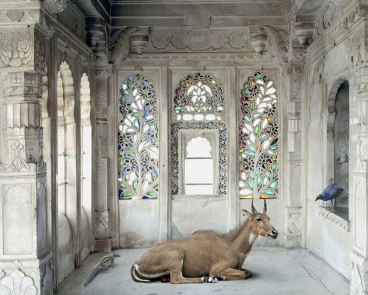 Karen Knorr, 019 A Place like Amravati, série India Song, 2008 -