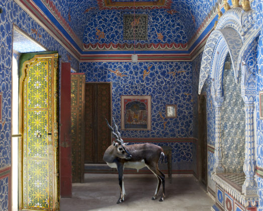 Karen Knorr, 023 The sound of rain, série India Song, 2008 -