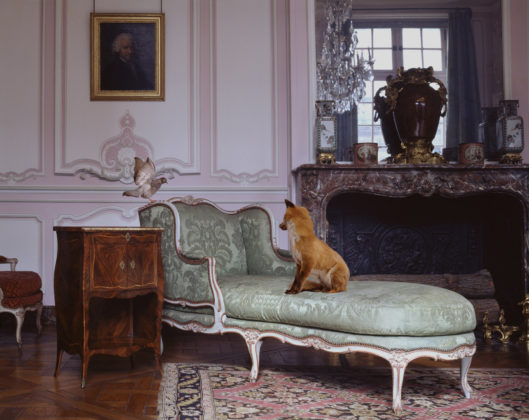Karen Knorr, The Salon Lilac Louis XV, série Fables, 2008, Carnavalet