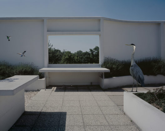 The Rooftop, Série Fables, Villa Savoye, 2006-2007