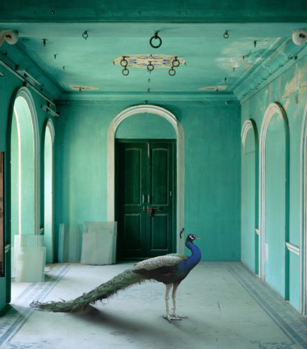 Karen Knorr<br />