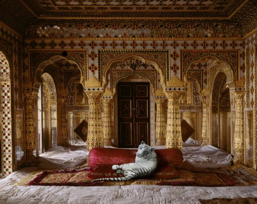 Karen Knorr, 012 The Peacemaker, Jaipur Palace, série India Song, 2008 -