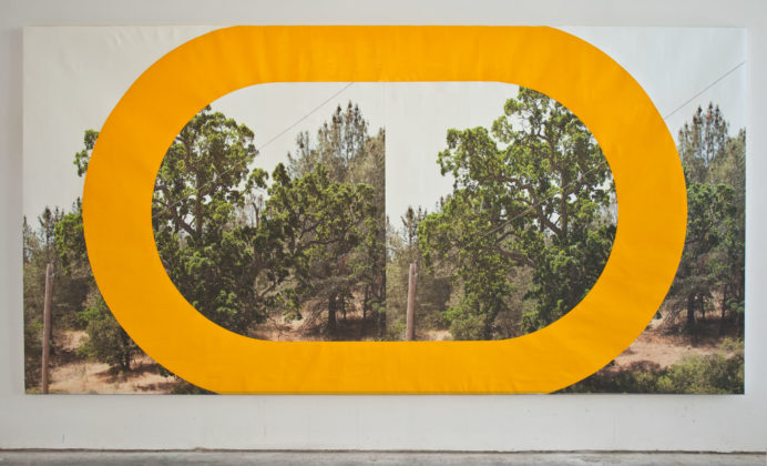 James Hyde, Two Trees, 2010