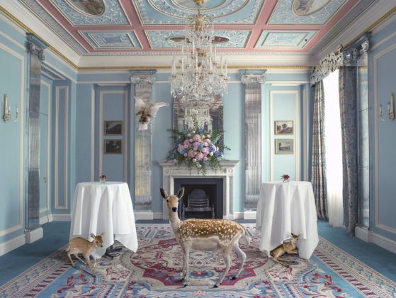 Karen Knorr, The Wedding Guests, série The Lanesborough, 2015