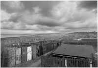 John Davies, Easington Colliery Allotments, county Durham, 1983. Courtesy VU'La Galerie, Paris