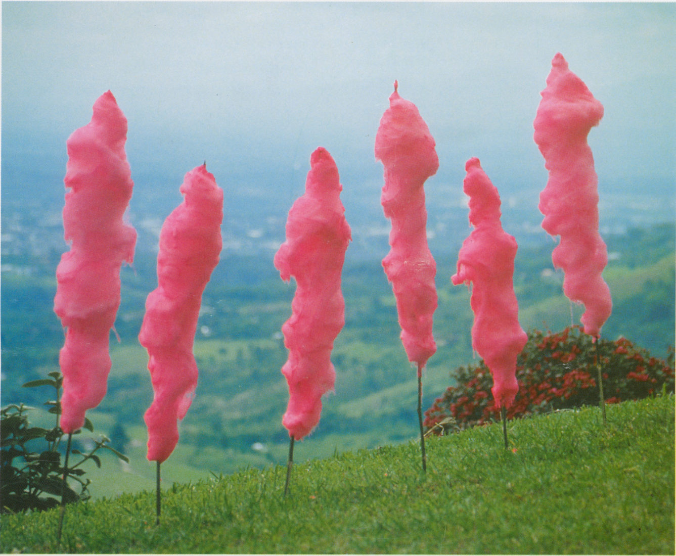 Adriana Arenas, Sweet Illusion, 1999