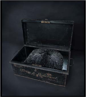 CACHE, 2011 Mixed media with pigeon tail feathers in antique metal trunk 21 x 48 x 28cm (44cm when open)